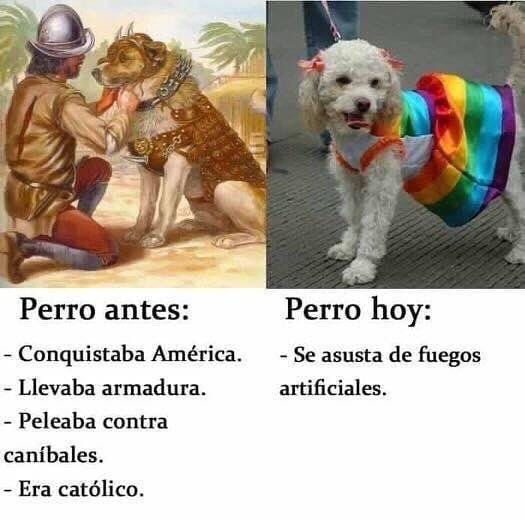 Los perros de los PPeros de hace 500 años sí que molaban.
