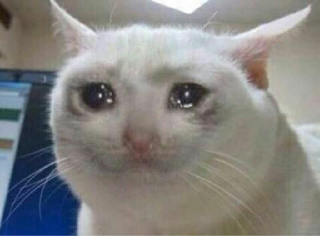 Mientras tú estás flipando con tu nuevo patinete Xiaomi de 300 pavos para moverte por la siudá...