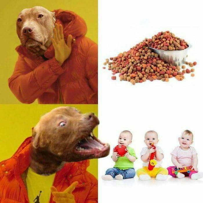 Padre evita que un perro ataque a su hijo pequeño