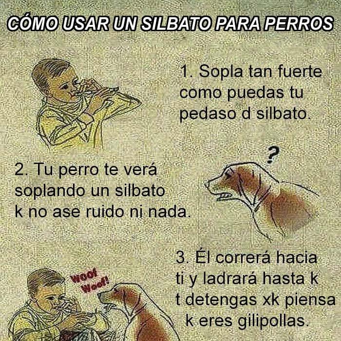 Cómo usar un silbato para perros