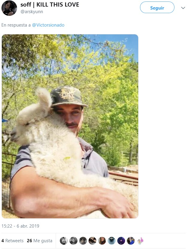 ¡Pero abraza a la alpaca por dios!