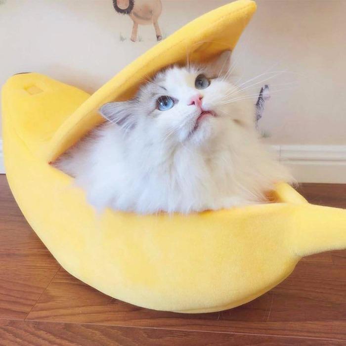 Cama-banana para gatos/perros