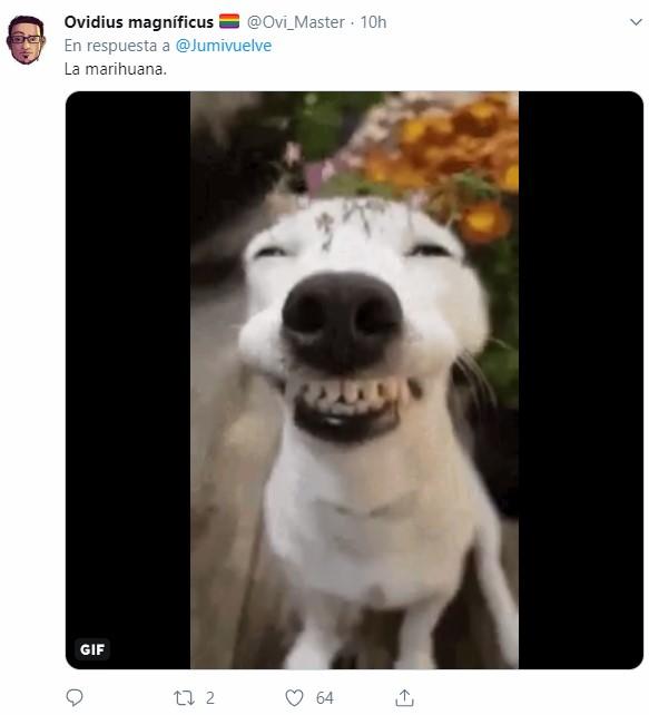 ¿Qué os hace sonreír sin motivo?