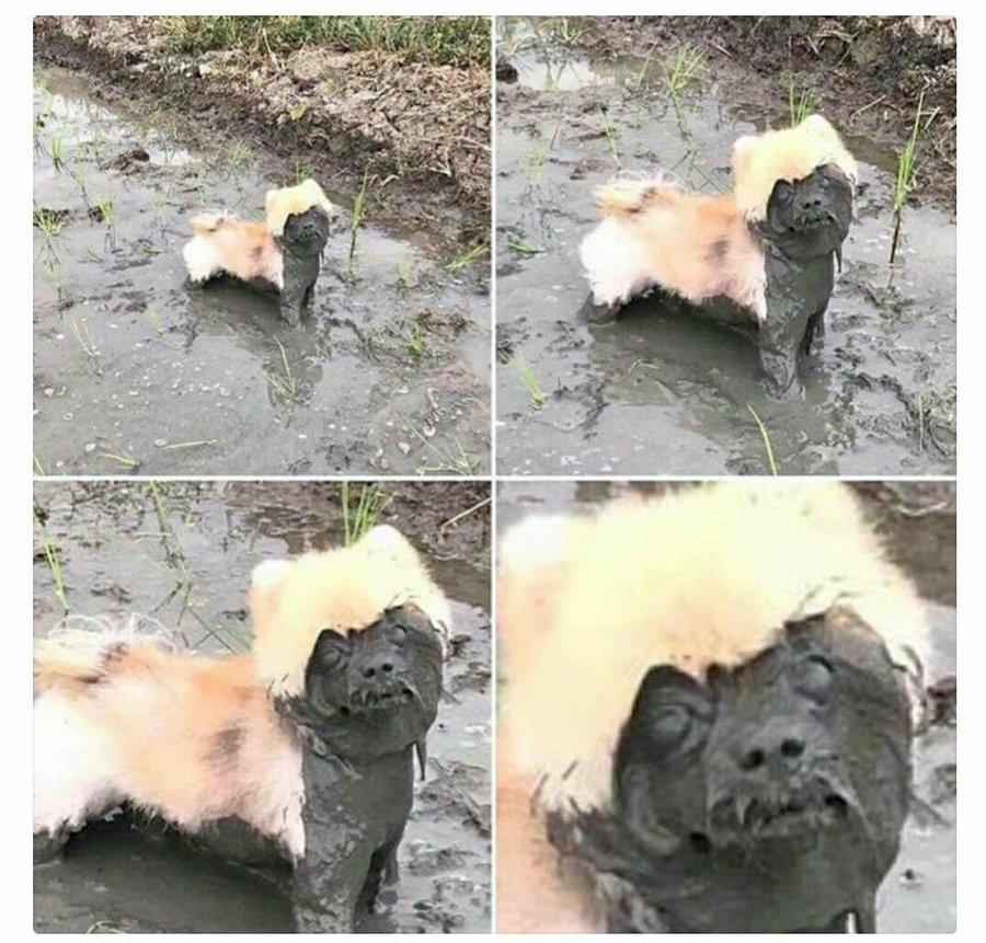 Te acabo de bañar, no te vayas a ensuci...