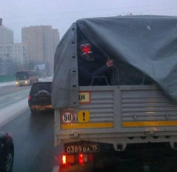 Una de cosas totalmente normales y corrientes en Rusia [69 fotos]