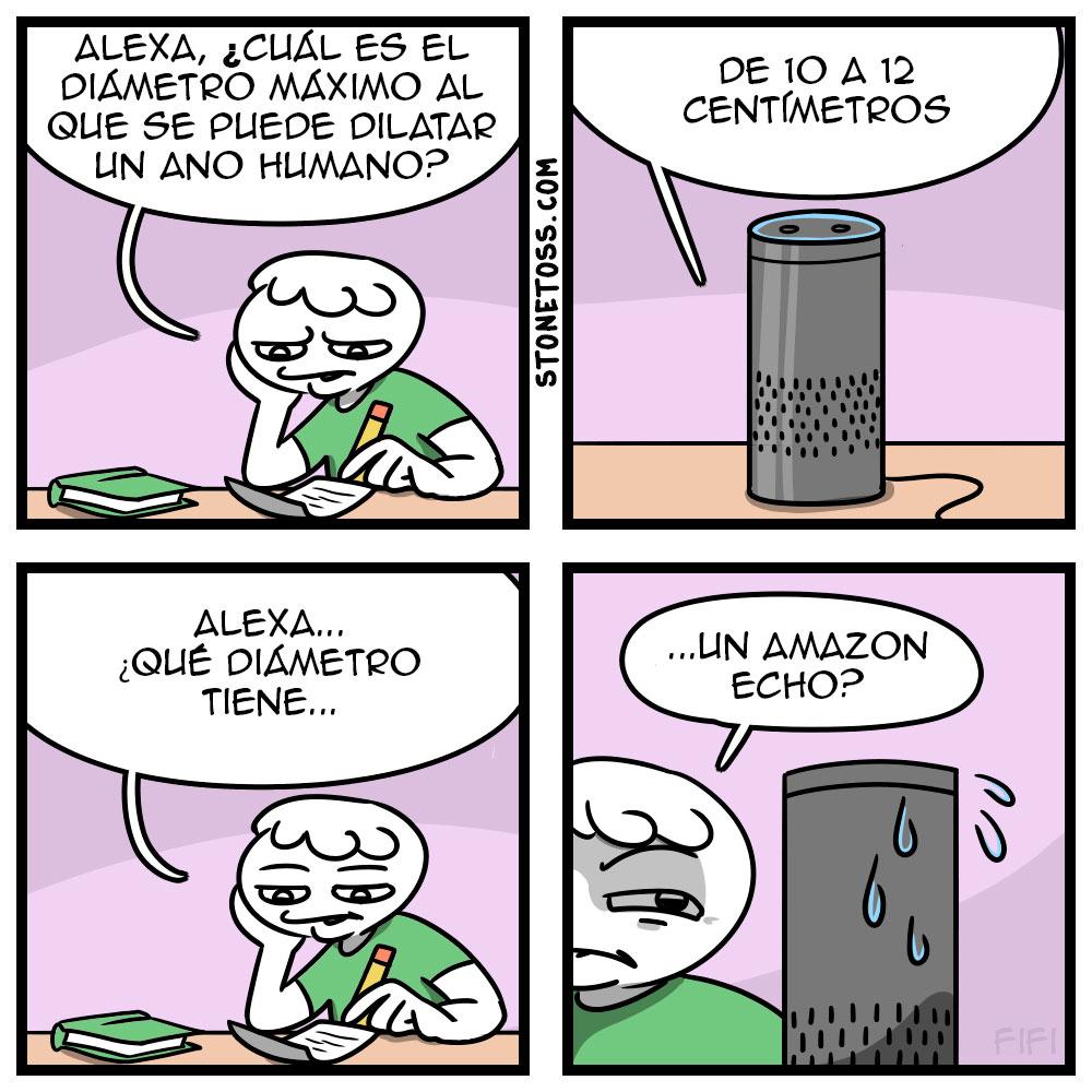 Alexa, contesta...