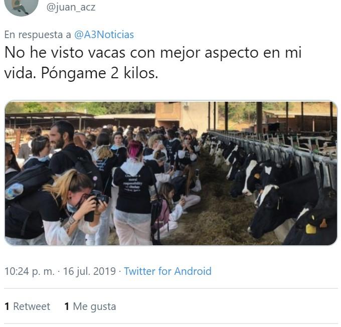 Ojo que las vacas estaban... ¡LLENAS DE MOSCAS! ¡en verano! ¡abrase visto semejante inyustisia!