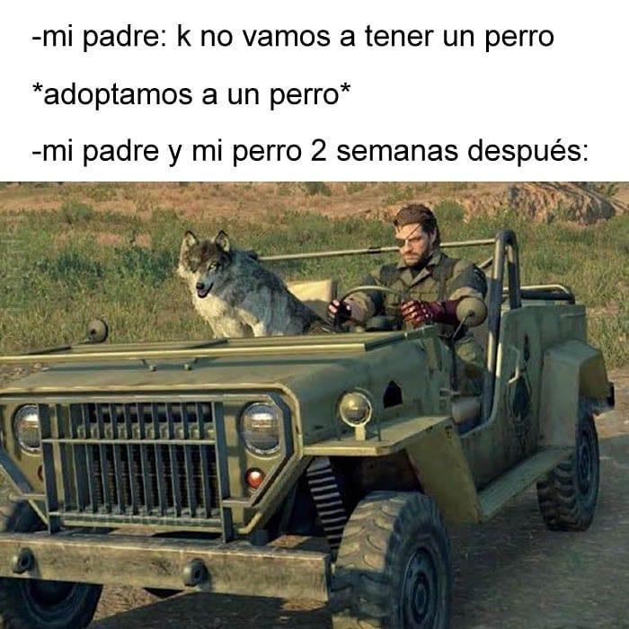 """""""NO QUIERO PERROS"""""""