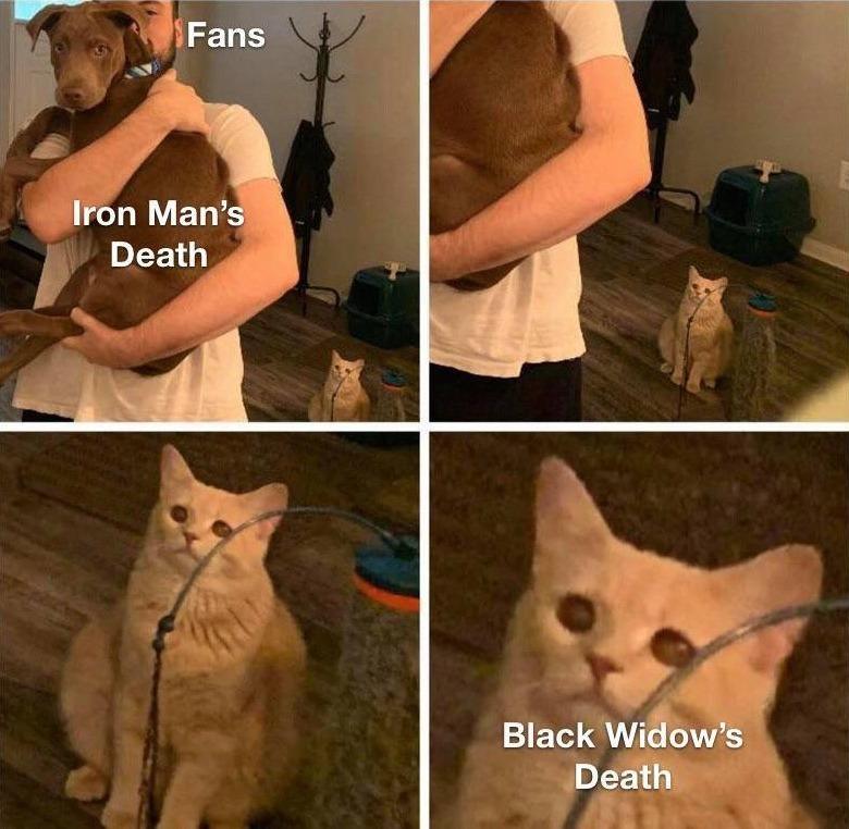 ¿Qué pasa con Black Widow? ¿Es que nadie se acuerda de Black Widow?