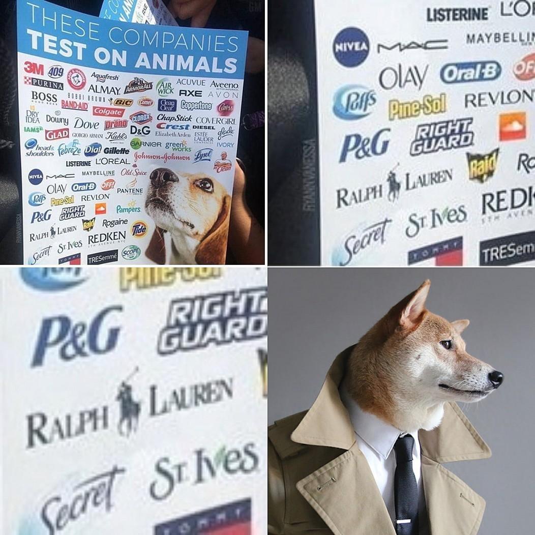 """""""Estas compañías hacen pruebas con animales"""""""