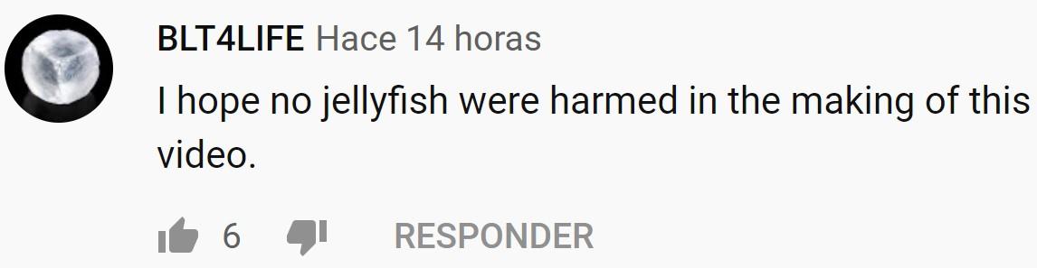 """""""Espero que ninguna medusa resultase herida durante la grabación de este vídeo"""""""