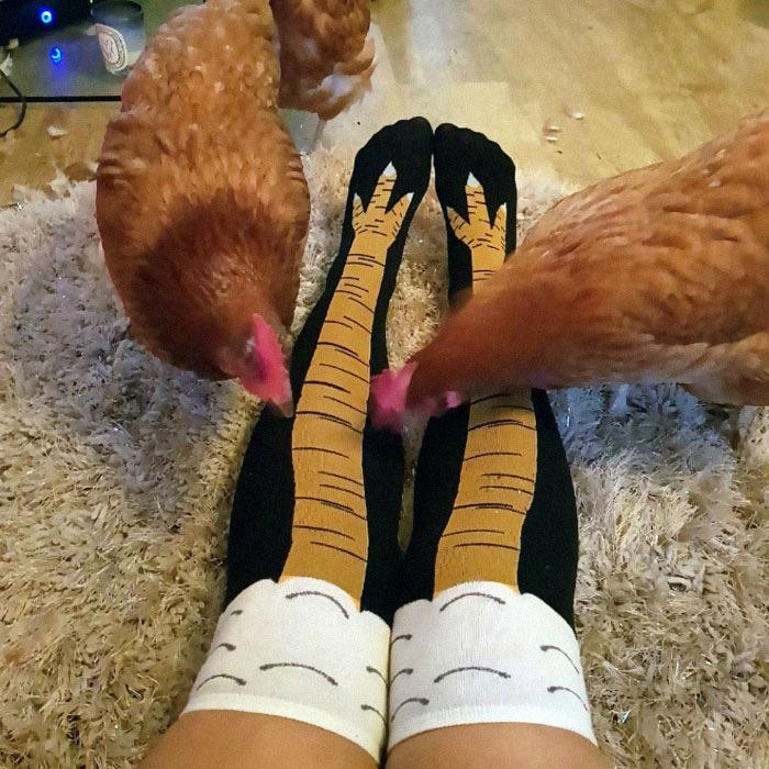 Los calcetines que estabas esperando