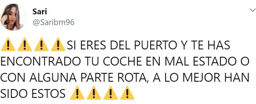 Dos indigentes mentales parten varios retrovisores en Puerto de Sagunto, se graban, y lo suben a Instagram