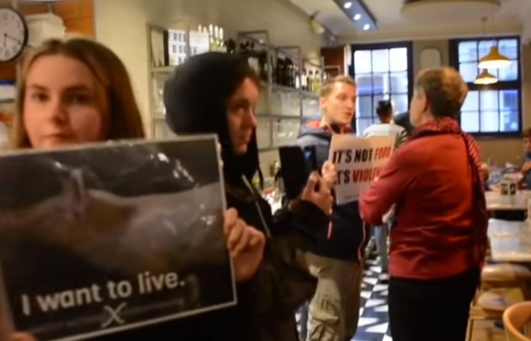Activista es golpeado por el propietario de una pizzería que estaba sufriendo un escrache antiespecista