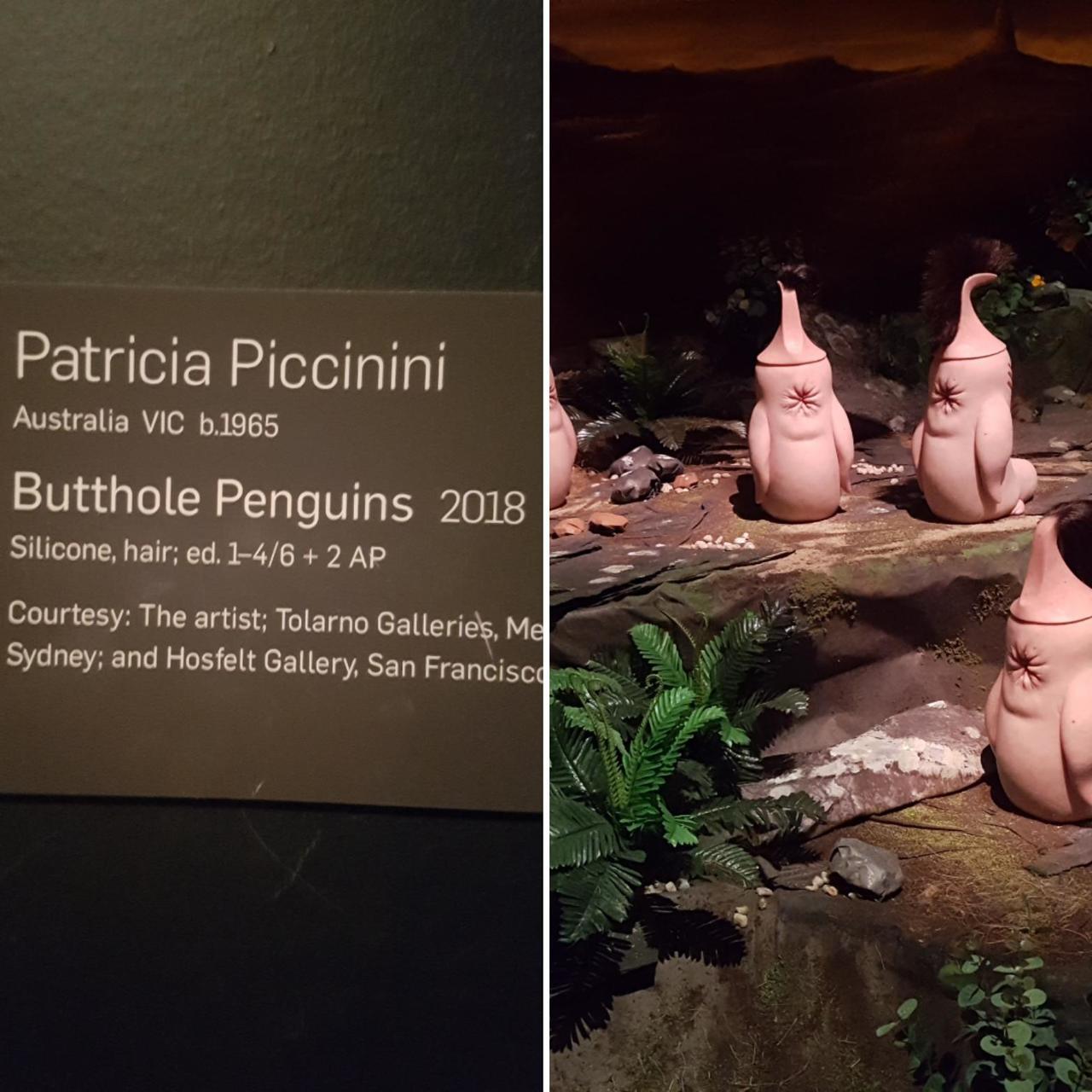 Pingüanos