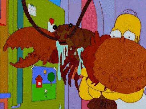 Jeremy Wade encuentra el cangrejo de río más grande jamás visto
