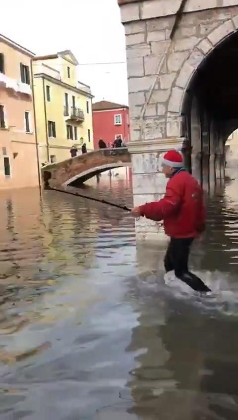 Selfnormal en Venecia