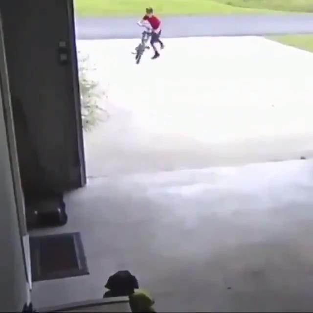 Cada vez que sale a pasear en bicicleta se mete a la casa de su vecino para darle un abrazo al perro