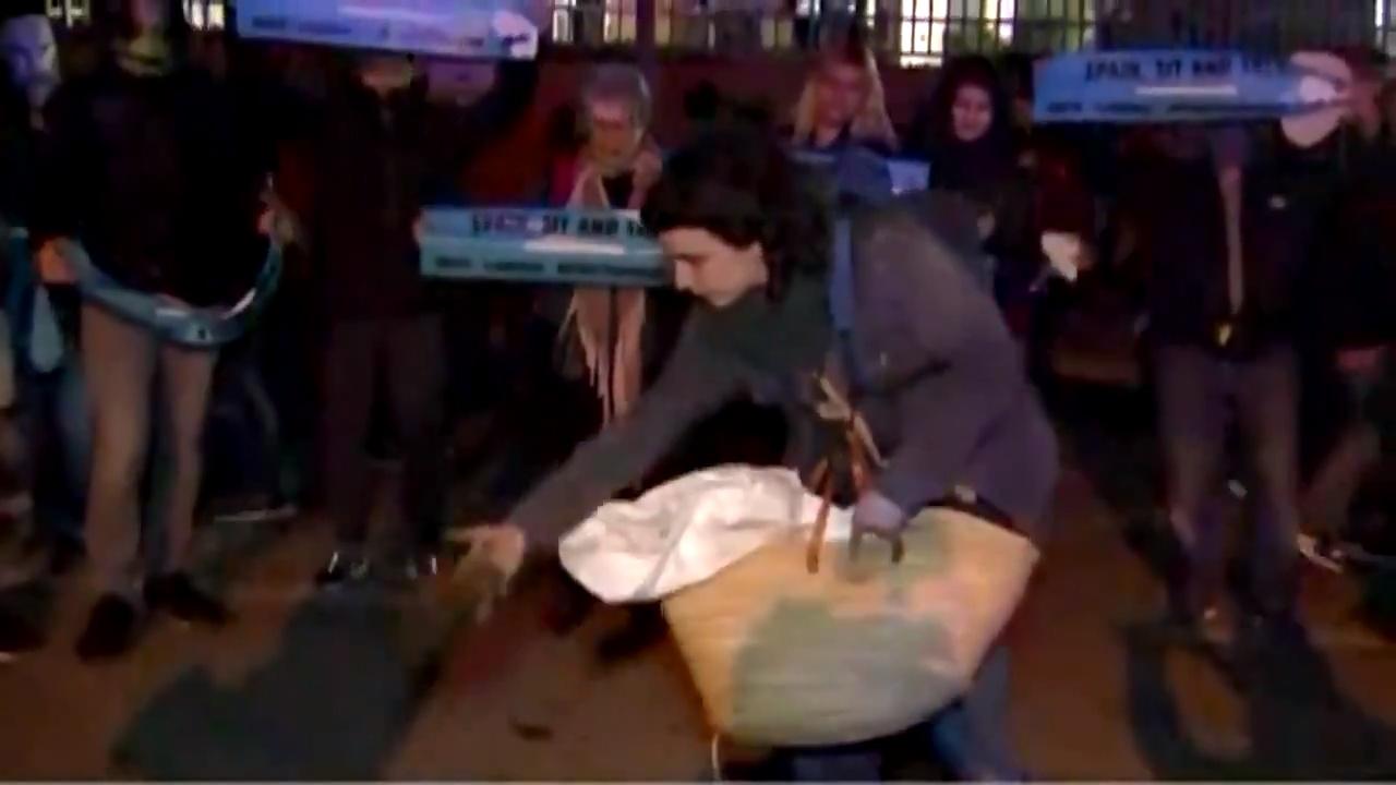 Manifestante usó círculo de heces animales. No fue muy efectivo...