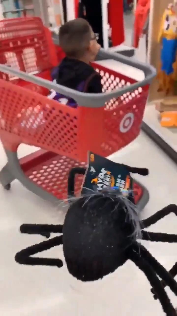 Y así, chicos, es cómo conocí... la fobia a las arañas