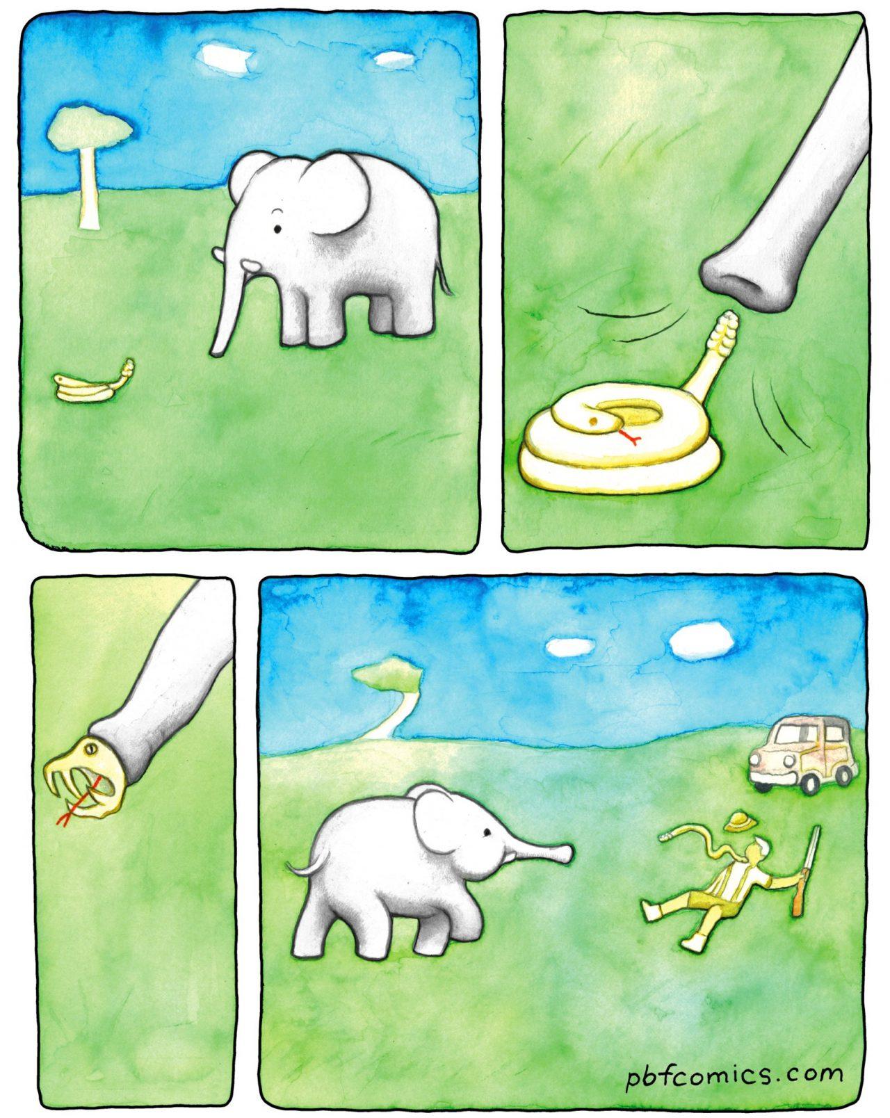 La Tierra no es un planeta dominado por civilizaciones de avanzados elefantes de puro milagro...