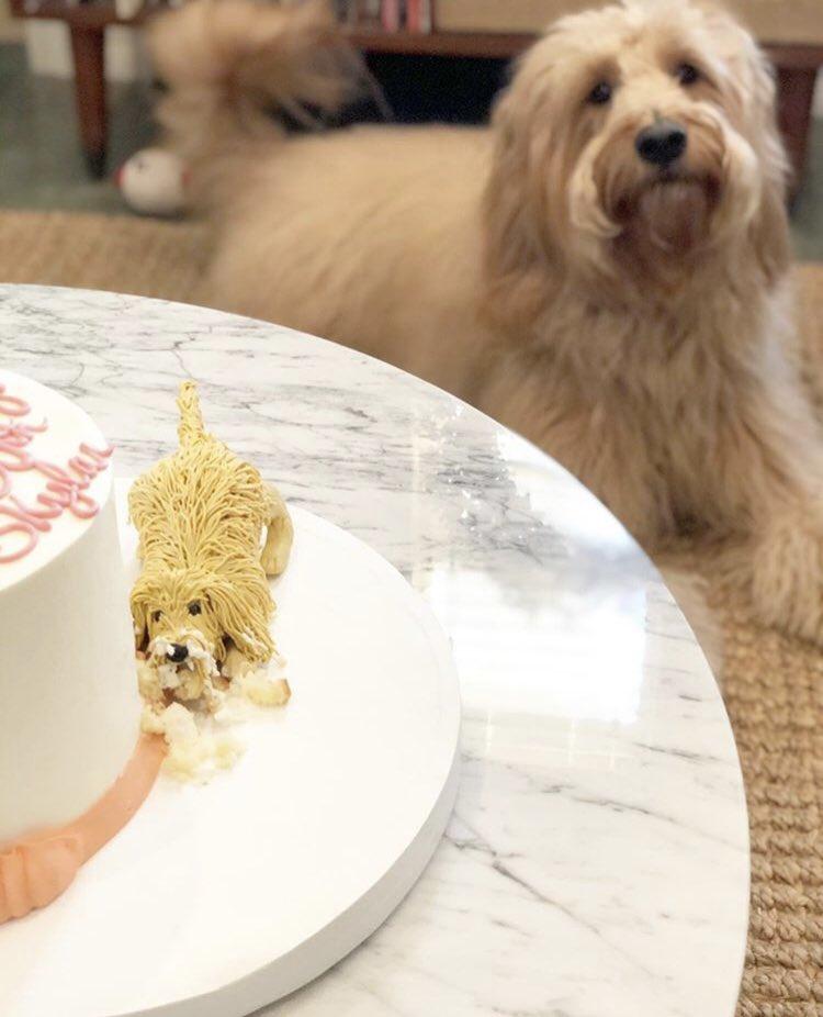 La tarta spoiler