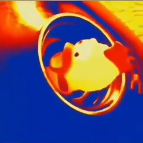 Así debe ser el infierno de los patos de goma