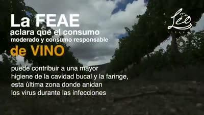 Ya no necesitamos vacunas, la Federación Española de Enología tiene la cura: EL VINO