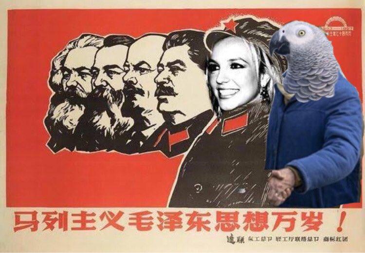 Breaking news: los loros son comunistas