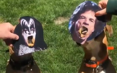 Kiss vs The Rolling Stones: El vídeo importante del día.