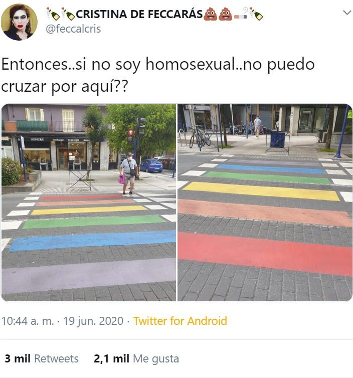 Malditos pasos de cebra homosecs...