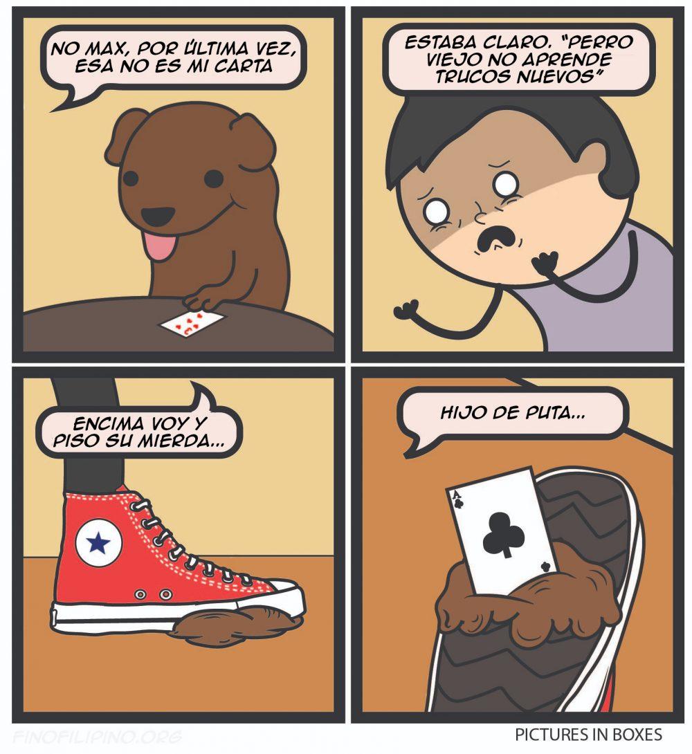 """""""Perro viejo no aprende trucos nuevos"""""""
