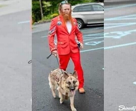 """Pro Tip: dopta un perro policía jubilado para encontrar gente """"divertida"""" en las fiestas"""