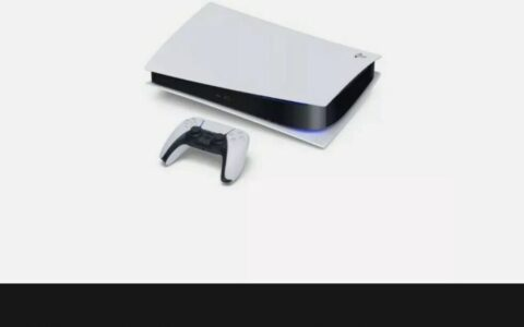 """PS5 """"P. Edition"""""""