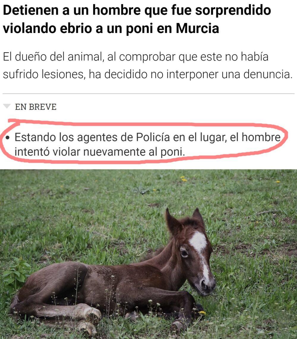 Creo que esta no es la manera adecuada de iniciarse en la equitación...