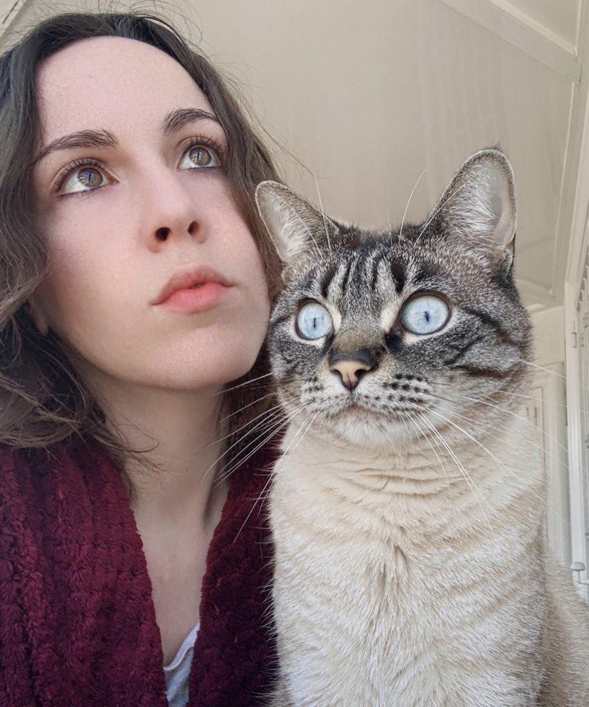 El gatete de la finolier KittyVk necesita aiuda :3