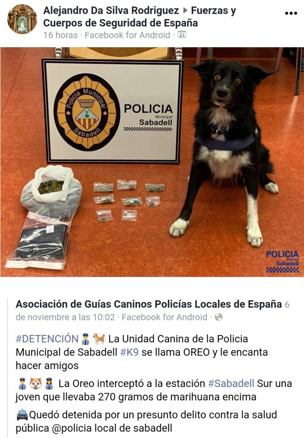 Creo que el perro de la policía de Sabadell ha hecho algo más que oler...