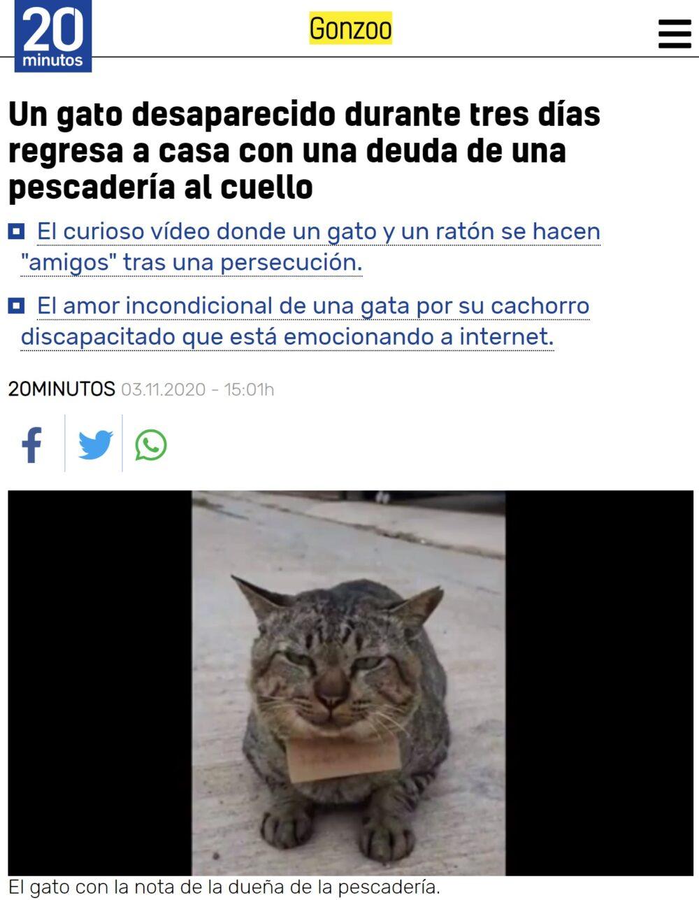 Cuando desaparece tu gato y a los 3 días vuelve... pero con deudas.