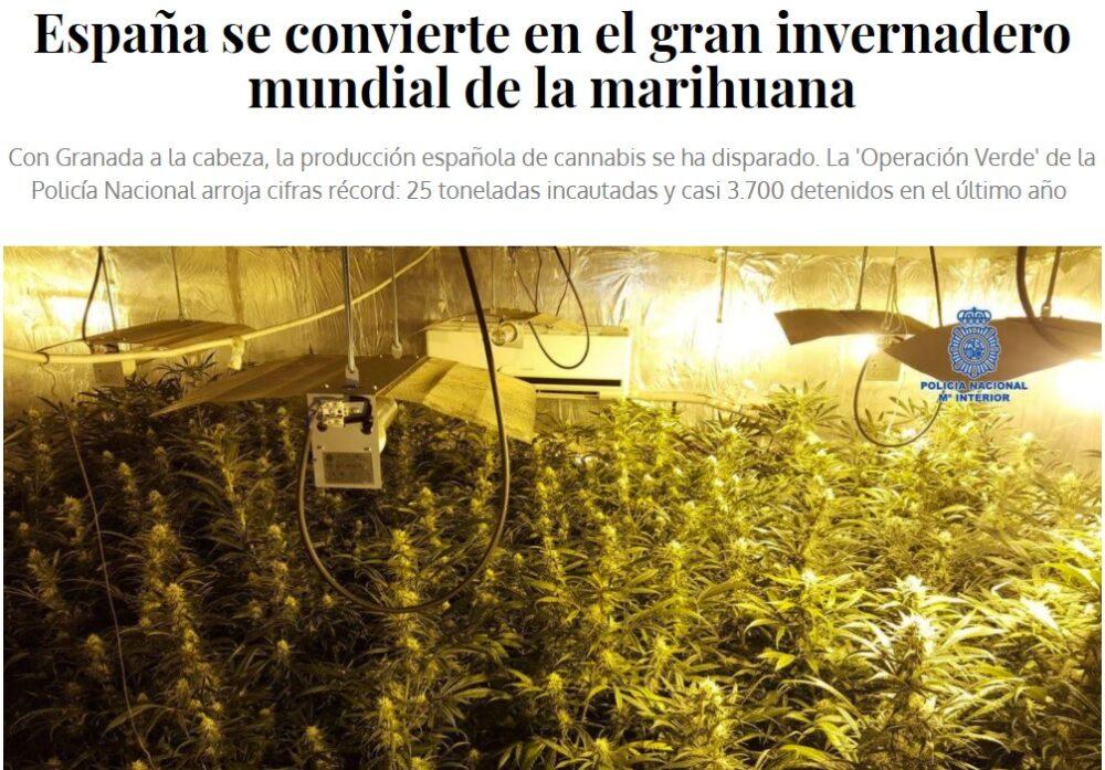La Europol descubre la mayor plantación de maría en España gracias a un fraude en el sistema eléctrico de 6 millones de euros