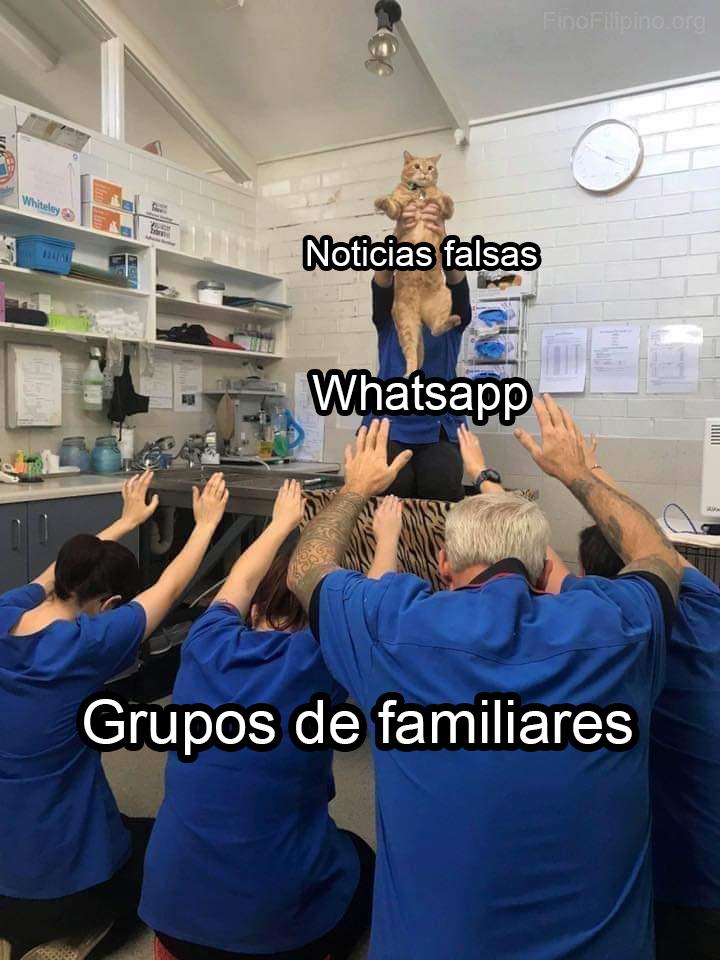 La pirámide de la información familiar