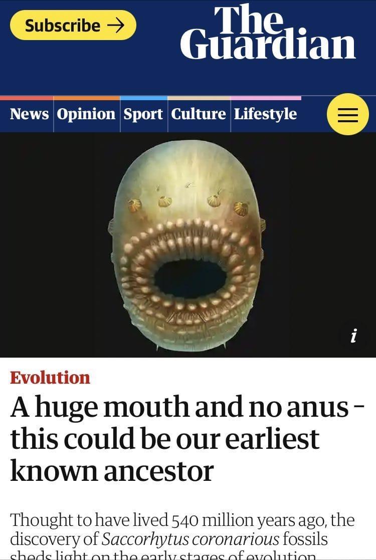 Nuestro antepasado más antiguo no tenía ogt
