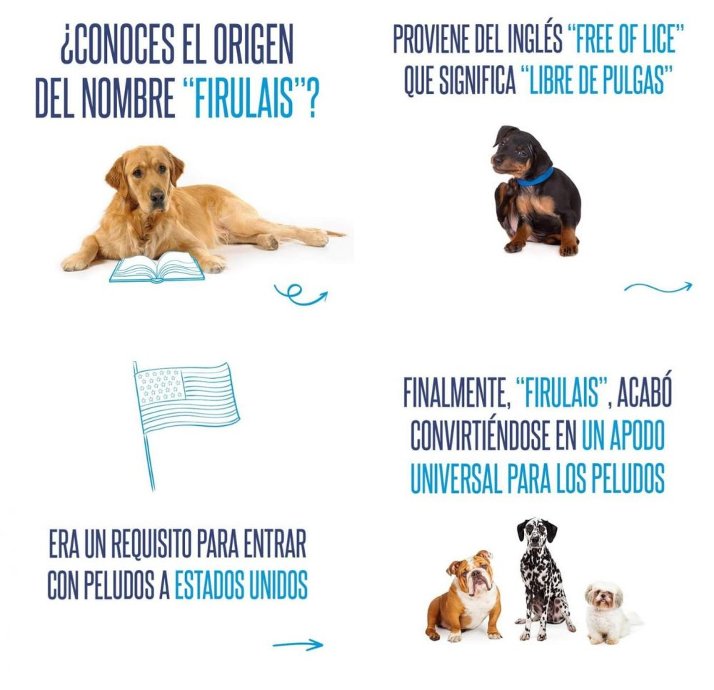 ¿Sabías de dónde viene el nombre FIRULAIS para los perros?