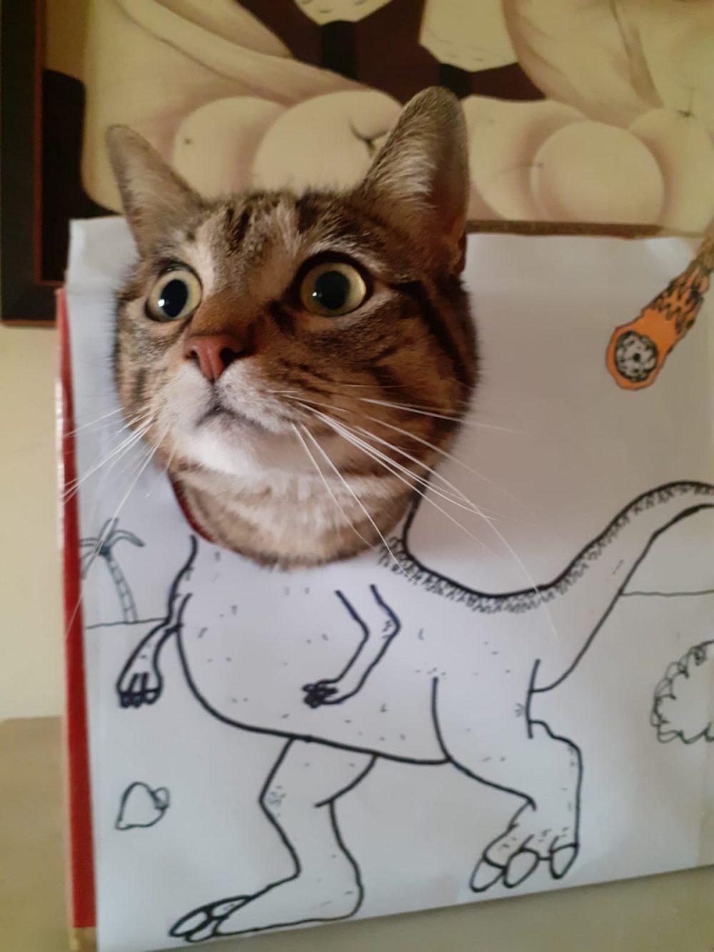 Un finolier nos enseña a su Tiranosaurus Cat