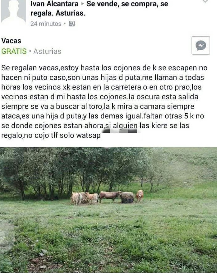 Milanuncios Asturias