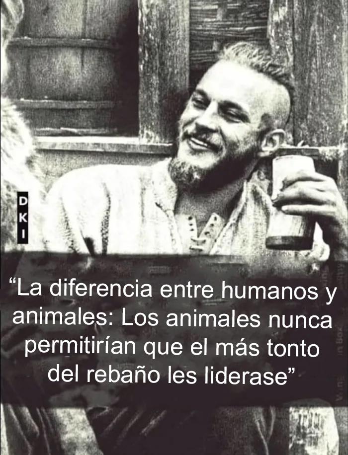 La principal diferencia entre humanos y animales