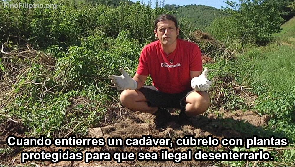 Sigan a Íñigo para más briconsejos de jardinería