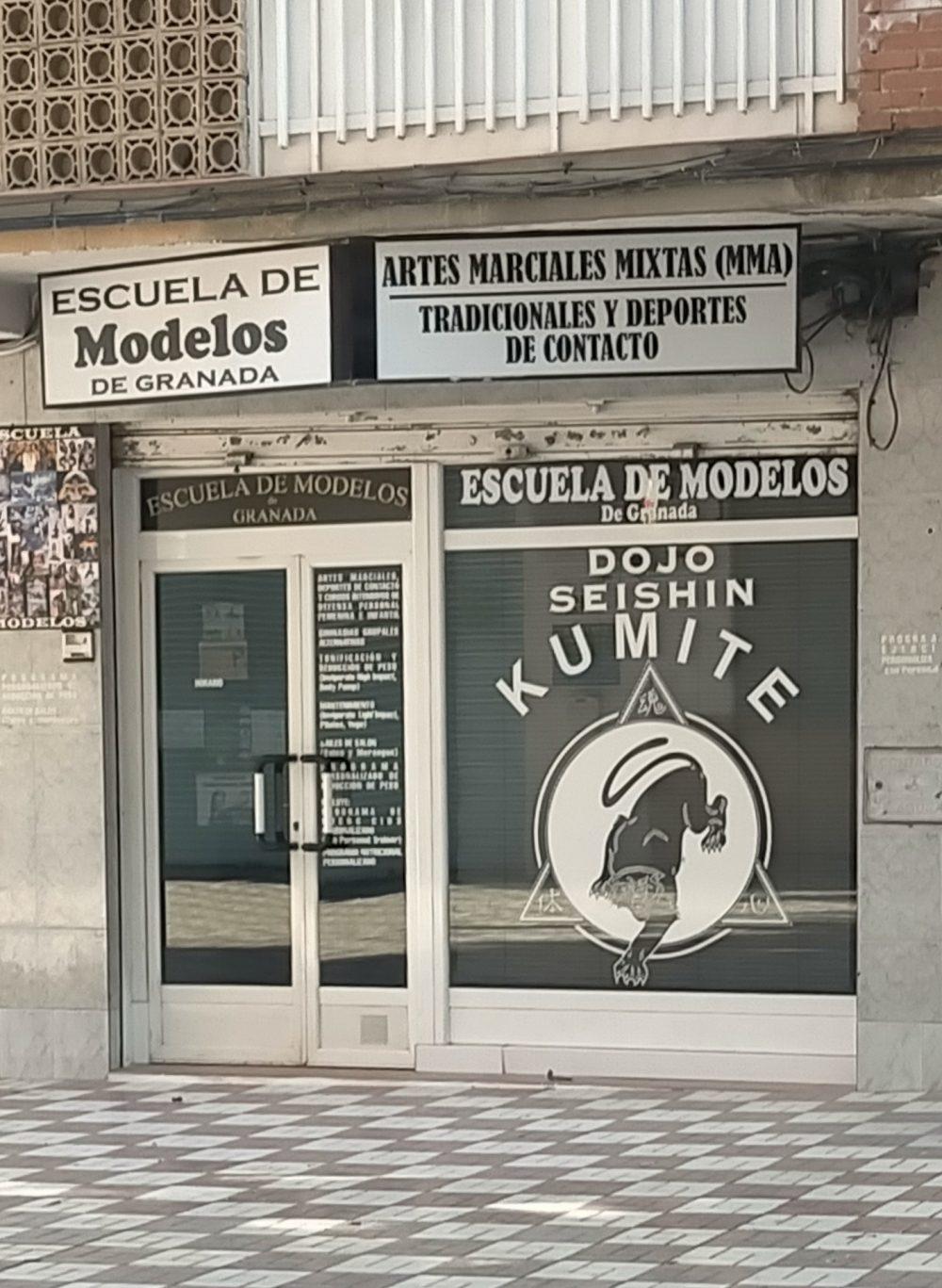 Escuela de modelos... NINJAS