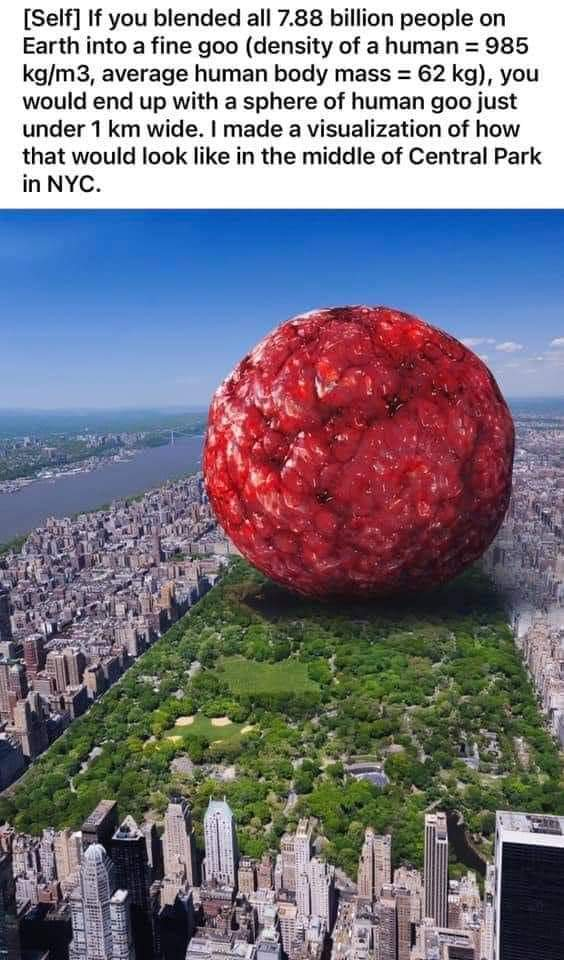 Si haces una bola de carne con los 7880 millones de habitantes que hay en nuestro planeta, tendríamos una bola de 1km de diámetro que tendría esta pinta puesta encima de Central Park