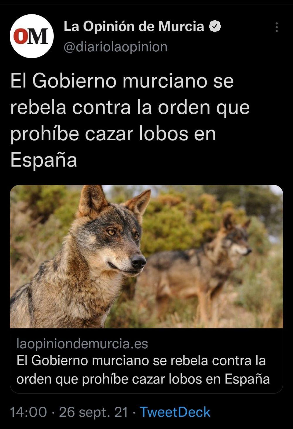 Así acabarán con esa masacre que asola Murcia...